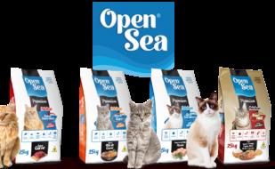 banner_opensea_gatos